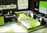 Юношеска спалня от пдч венге и зелено