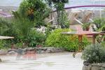 Здрави стойки за маси за градини