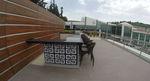 Стилни столове от ратан за заведения