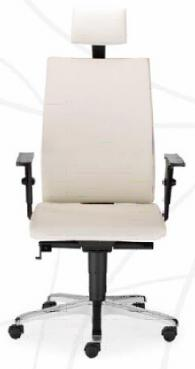 Директорски стол INTRATA M-22 HR