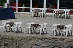 Пластмасов бял стол за бар