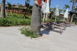 Шезлонги,произведени алуминиеви за плаж и басейн