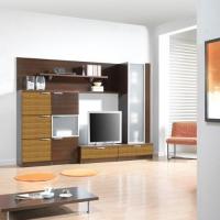 Луксозни мебели за дневна по поръчка за  София по-поръчка