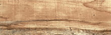 Плочка за баня WOOD MATT 20х60